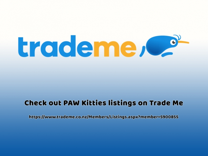 Check out PAW Kitties listings on Trade Me